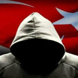 Ahmet Enes ERGİN